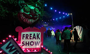 Beginning of the Freak Show