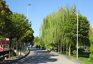 One of Göksu Park's tree lined pathways